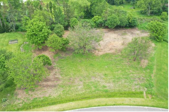 Lot 3 Brierwood Drive, St. Charles, IL 60175 (MLS #10937790) :: Suburban Life Realty