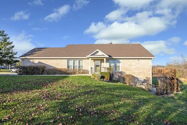7809 Belle Rive Court, Tinley Park, IL 60477 (MLS #10938063) :: Lewke Partners
