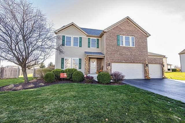 1016 Foxview Drive, Joliet, IL 60431 (MLS #10938220) :: Lewke Partners