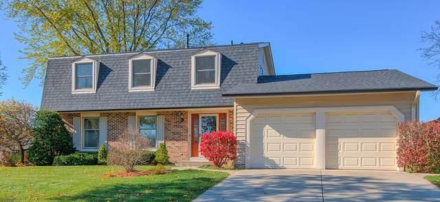 718 Utah Street, Elk Grove Village, IL 60007 (MLS #10938536) :: BN Homes Group