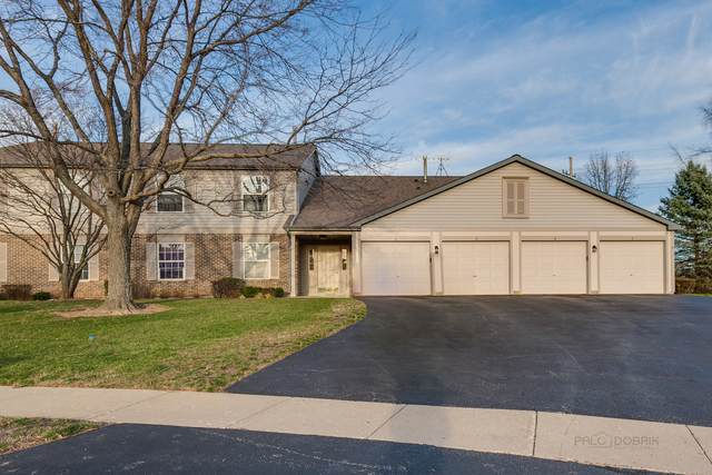 250 Crestview Drive D, Wauconda, IL 60084 (MLS #10938601) :: Helen Oliveri Real Estate