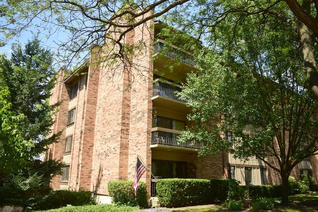 301 Lake Hinsdale Drive #313, Willowbrook, IL 60527 (MLS #10938638) :: BN Homes Group