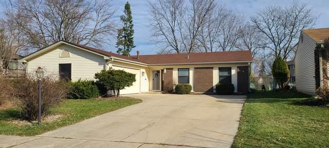117 Jill Lane, Streamwood, IL 60107 (MLS #10938809) :: Lewke Partners