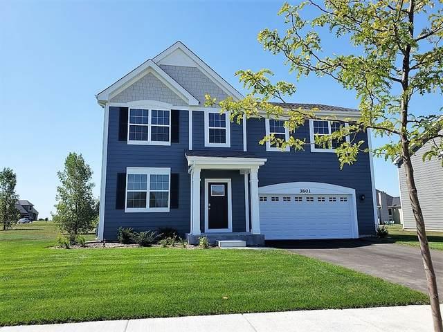 3804 Ivy Lane, Elgin, IL 60124 (MLS #10939052) :: BN Homes Group