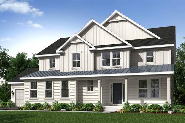24196 N Coneflower Lot #1 Drive, Lake Barrington, IL 60010 (MLS #10939292) :: John Lyons Real Estate