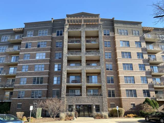 125 Lakeview Drive #609, Bloomingdale, IL 60108 (MLS #10939473) :: RE/MAX IMPACT