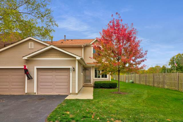 281 E Forest Knoll Drive, Palatine, IL 60074 (MLS #10939539) :: Helen Oliveri Real Estate
