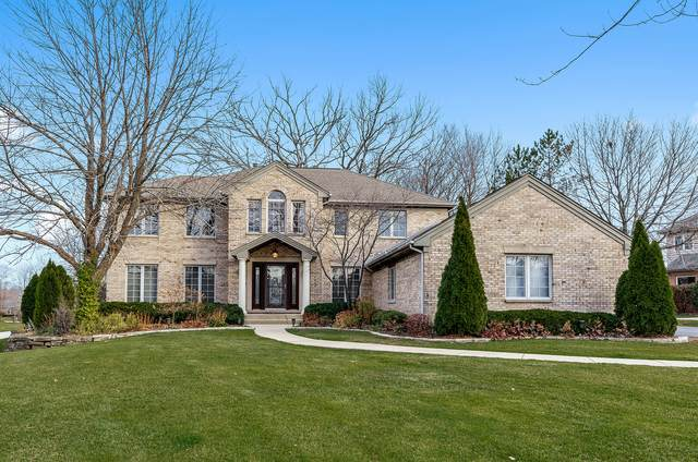 1051 S Hiddenbrook Trail, Palatine, IL 60067 (MLS #10939543) :: Helen Oliveri Real Estate