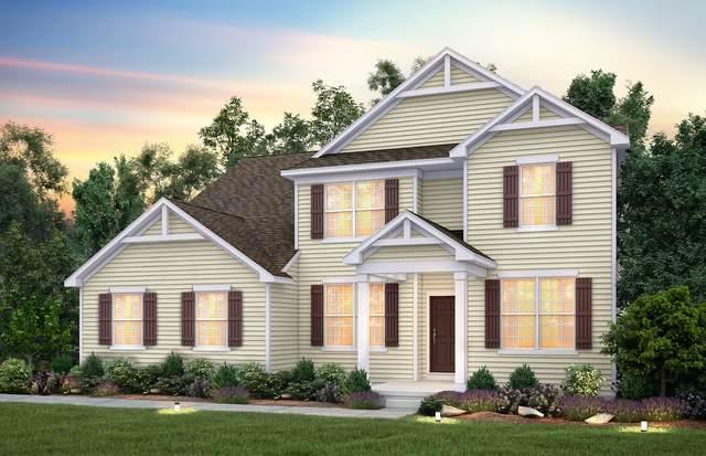 794 Marlisle Lane, Elgin, IL 60124 (MLS #10940063) :: Suburban Life Realty