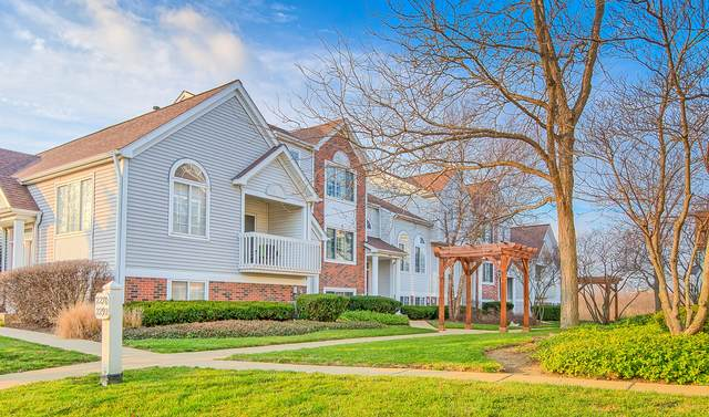 2284 Dawson Lane, Algonquin, IL 60102 (MLS #10940218) :: Property Consultants Realty