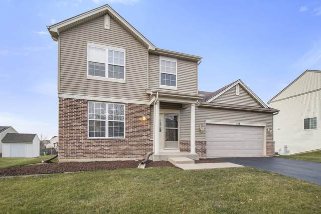 829 Briarcliff Drive, Minooka, IL 60447 (MLS #10940942) :: Helen Oliveri Real Estate