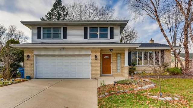 616 Huntington Lane, Schaumburg, IL 60193 (MLS #10941095) :: Littlefield Group