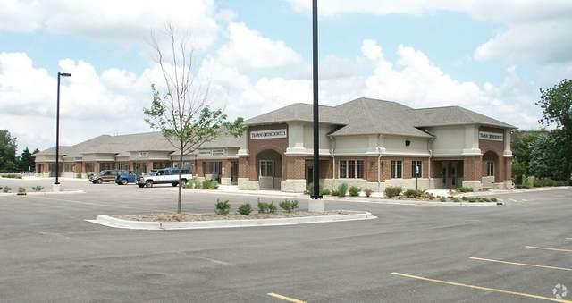 1491 Merchant Drive, Algonquin, IL 60102 (MLS #10941096) :: BN Homes Group