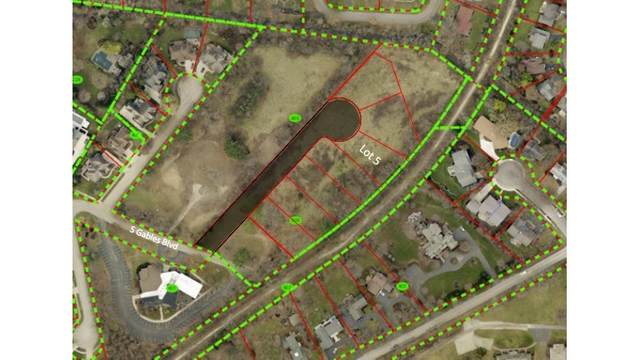 Lot 5 Lodalia Court, Wheaton, IL 60189 (MLS #10941192) :: The Dena Furlow Team - Keller Williams Realty