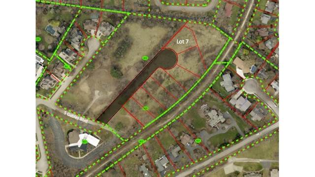 Lot 7 Lodalia Court, Wheaton, IL 60189 (MLS #10941207) :: The Dena Furlow Team - Keller Williams Realty