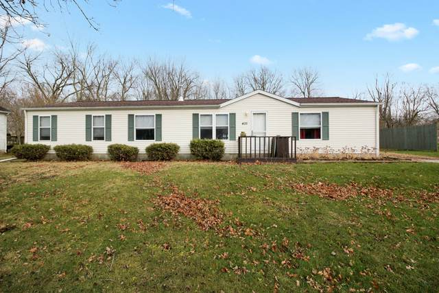 405 N 1st Street, BELLFLOWER, IL 62174 (MLS #10941572) :: The Spaniak Team