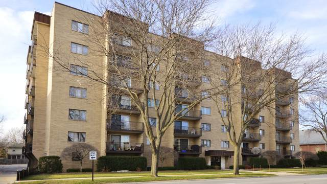 700 Graceland Avenue #504, Des Plaines, IL 60016 (MLS #10941613) :: The Wexler Group at Keller Williams Preferred Realty