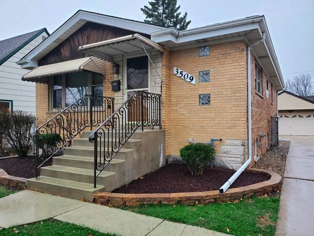 3509 Emerson Street, Franklin Park, IL 60131 (MLS #10941625) :: BN Homes Group