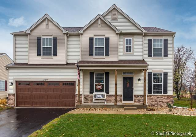 260 Blazing Star Drive, Minooka, IL 60447 (MLS #10941688) :: BN Homes Group