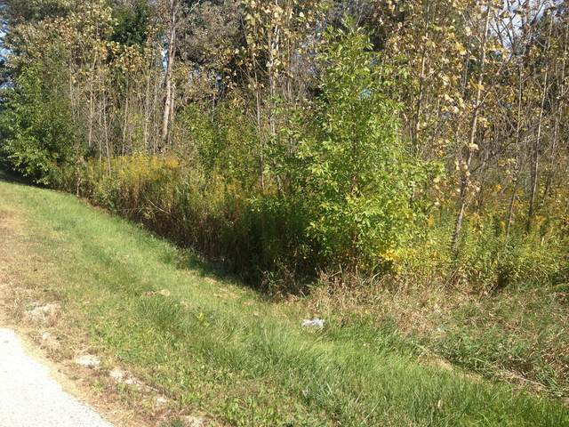 Lot 4 Winthrop Avenue, Lombard, IL 60148 (MLS #10941737) :: BN Homes Group