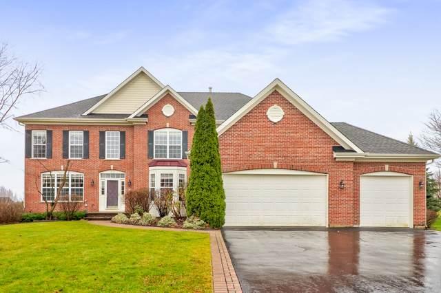 20 Deerfield Drive, Hawthorn Woods, IL 60047 (MLS #10941749) :: Helen Oliveri Real Estate