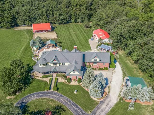13138 W Chicago Bloomington Trail, Homer Glen, IL 60491 (MLS #10942631) :: Angela Walker Homes Real Estate Group