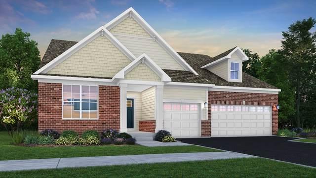 16045 S Longcommon Lane, Plainfield, IL 60586 (MLS #10942634) :: Angela Walker Homes Real Estate Group