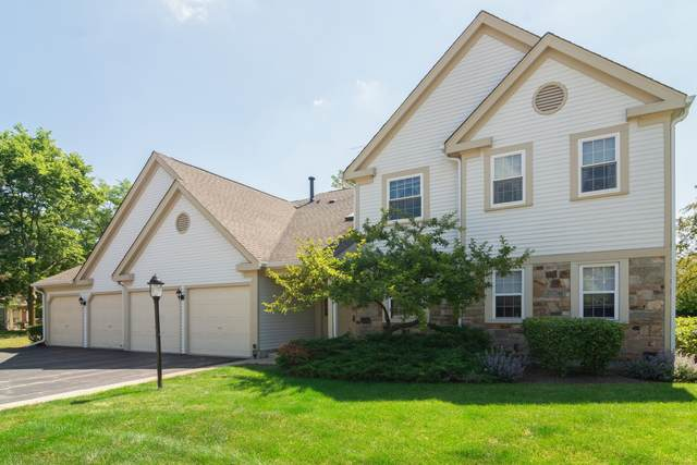 9 Aberdeen Court Z2, Schaumburg, IL 60194 (MLS #10943622) :: John Lyons Real Estate