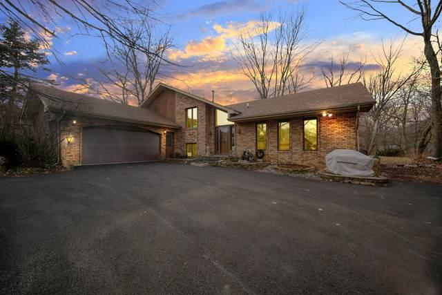 16600 S Spaniel Drive, Homer Glen, IL 60491 (MLS #10943851) :: Schoon Family Group