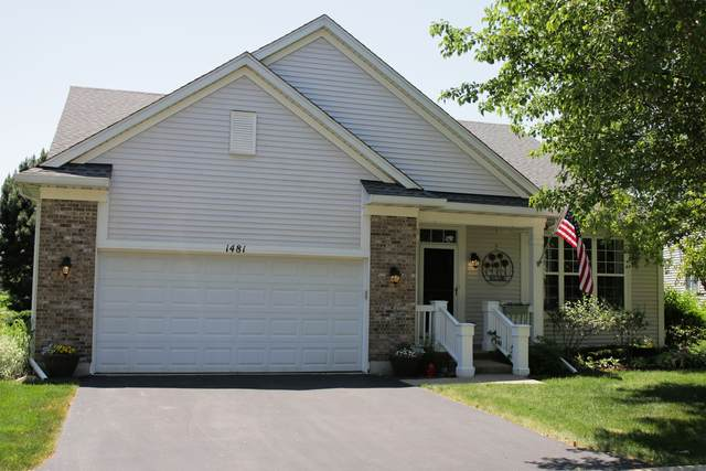1481 W Flint Lane, Romeoville, IL 60446 (MLS #10944684) :: Lewke Partners