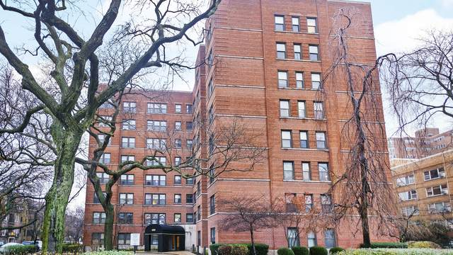 4900 N Marine Drive #208, Chicago, IL 60640 (MLS #10944767) :: Property Consultants Realty