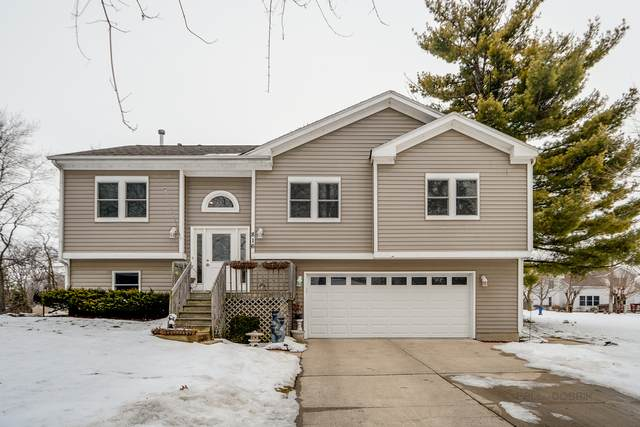 816 W Wood Street, Mchenry, IL 60051 (MLS #10945130) :: Helen Oliveri Real Estate