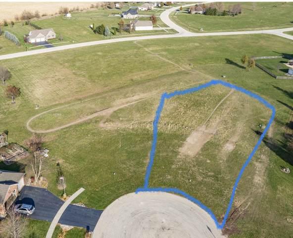 910 Tall Grass Court, Somonauk, IL 60552 (MLS #10945749) :: Littlefield Group