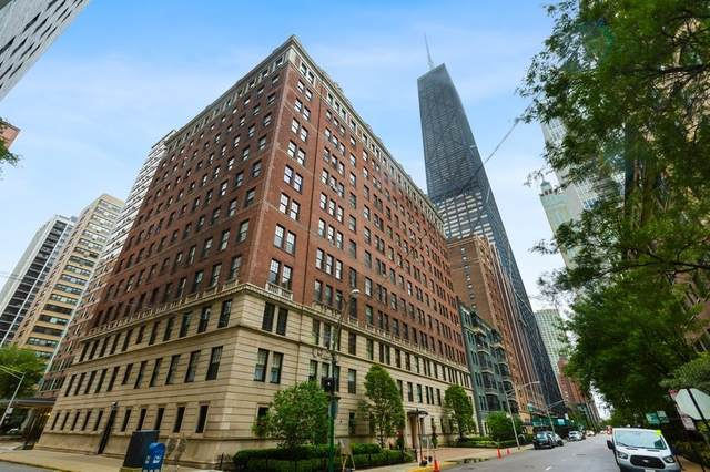 227 E Delaware Place 5D, Chicago, IL 60611 (MLS #10945804) :: Property Consultants Realty
