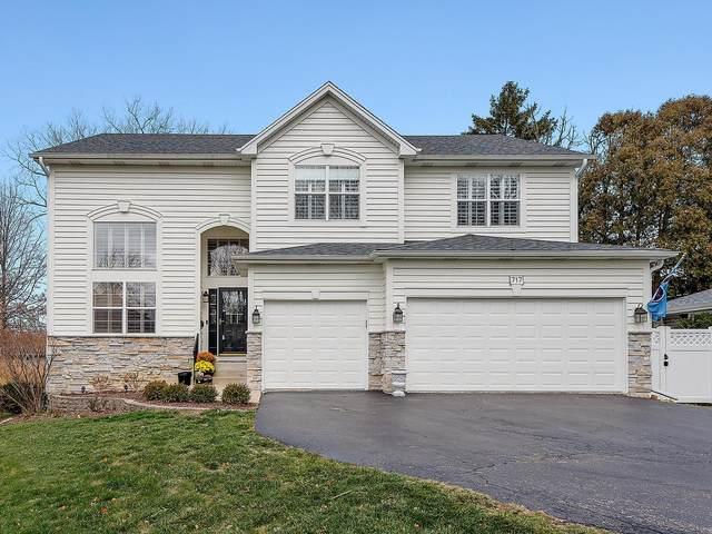 717 Wakeman Avenue, Wheaton, IL 60187 (MLS #10945841) :: BN Homes Group