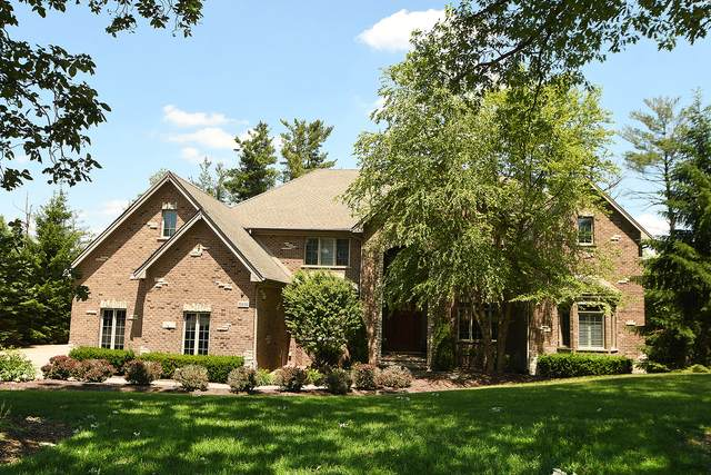 10830 Oakland Drive, Orland Park, IL 60467 (MLS #10947039) :: BN Homes Group
