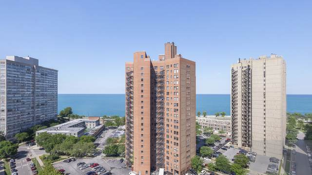 5000 S Cornell Avenue 16B, Chicago, IL 60615 (MLS #10947079) :: The Wexler Group at Keller Williams Preferred Realty