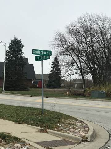 Lot 5C and 5D Lily Cache Lane, Bolingbrook, IL 60440 (MLS #10947162) :: Carolyn and Hillary Homes