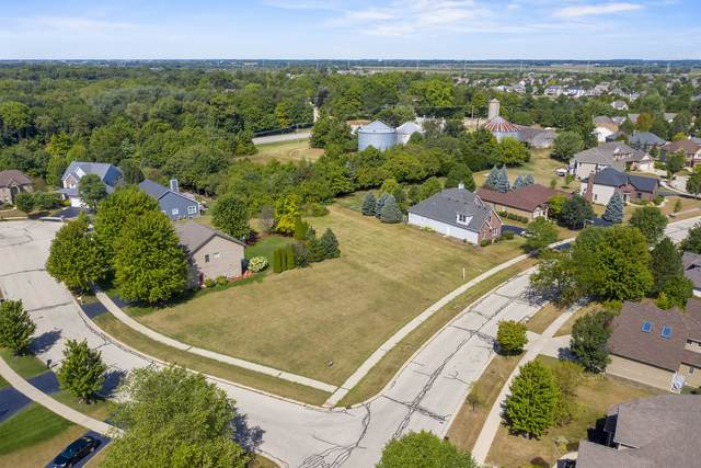 744 Merrill New Road, Sugar Grove, IL 60554 (MLS #10947210) :: John Lyons Real Estate