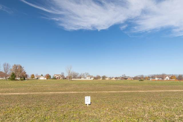 980 Prairie View Drive, Somonauk, IL 60552 (MLS #10947620) :: BN Homes Group