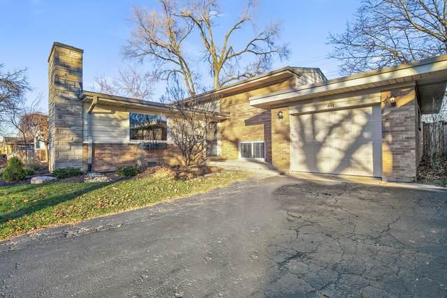 491 E Park Avenue, Elmhurst, IL 60126 (MLS #10947901) :: Lewke Partners