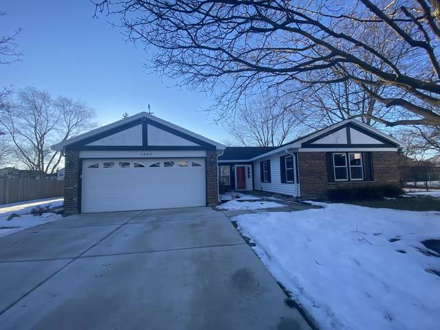 1854 Deere Lane, Glendale Heights, IL 60139 (MLS #10948259) :: Jacqui Miller Homes