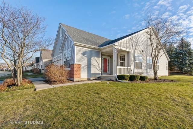 337 Enfield Lane, Grayslake, IL 60030 (MLS #10948291) :: BN Homes Group