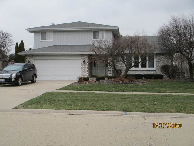 12044 W Lakeview Trail, Homer Glen, IL 60491 (MLS #10948727) :: Jacqui Miller Homes