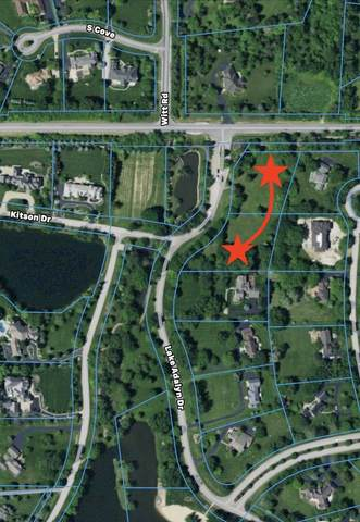 LOTS 1 & 3 Lake Adalyn Drive, South Barrington, IL 60010 (MLS #10948734) :: The Dena Furlow Team - Keller Williams Realty