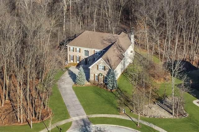 5425 Chancery Road, Gurnee, IL 60031 (MLS #10948880) :: Schoon Family Group