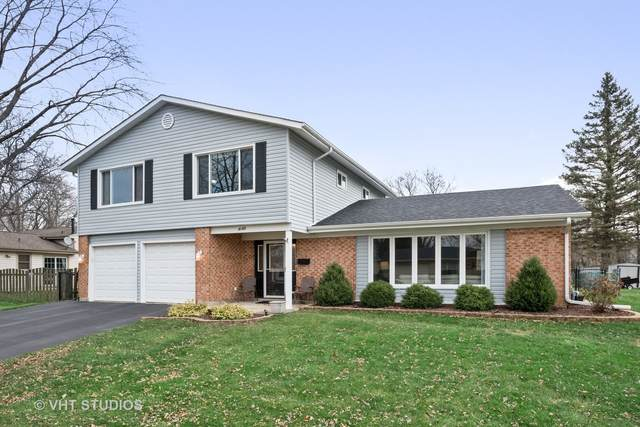 8185 Dartmouth Lane, Hanover Park, IL 60133 (MLS #10949056) :: Suburban Life Realty