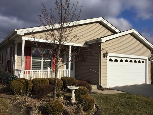 223 Rodeo Drive, Grayslake, IL 60030 (MLS #10949388) :: Suburban Life Realty