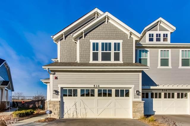 534 Peterson Court, Barrington, IL 60010 (MLS #10950176) :: John Lyons Real Estate