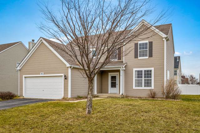 915 Sable Ridge Drive, Joliet, IL 60431 (MLS #10950302) :: Suburban Life Realty